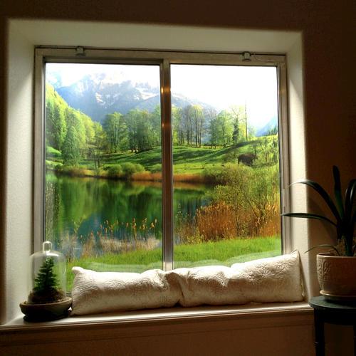 Biggies Lake Window Well Scene At Menards 174