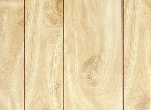 Birch Wood Wall Paneling : Dpi woodgrains lite birch hardboard wall panel at