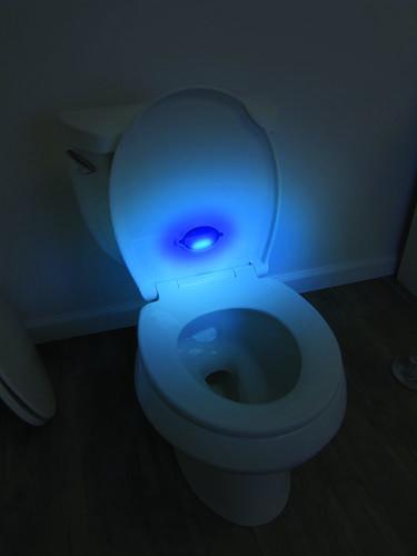 Sharper Image Nightlight Toilet Seat At Menards 174