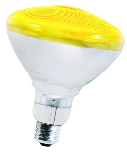 Outdoor Flood Light Bulbs Menards