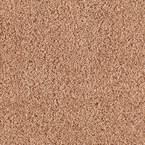 Mohawk Gifted Charm Plush Carpet 12 Ft Wide at Menards®