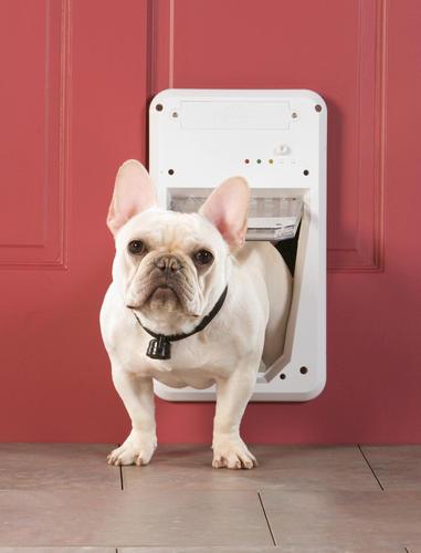 petsafe smartdoor 5 5 x small white electronic pet