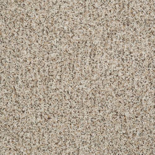 Shaw Spontaneous Plush Carpet 12 Ft Wide At Menards 174