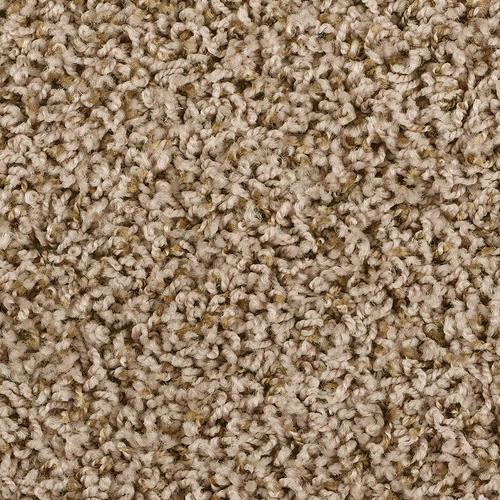 Shaw Frieze Carpet Floor Matttroy