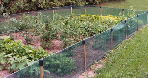 Volm 2 X 25 Garden Net Fence At Menards 174